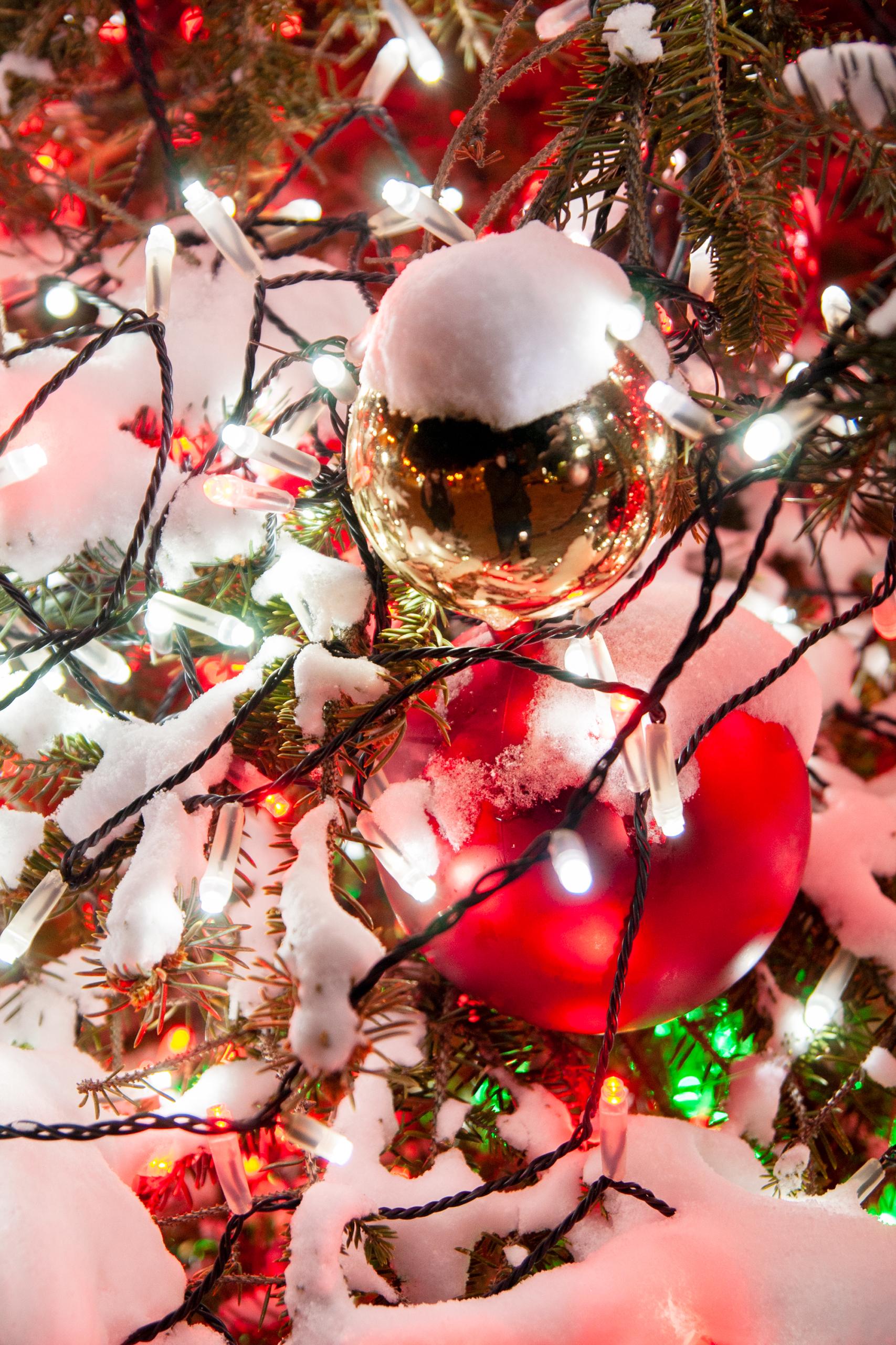 クリスマスツリーのオーブ